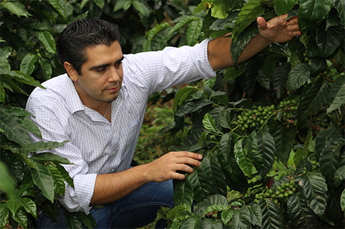Raul Rivera on his coffee farm. His Santa Rosa microlot set a record-breaking price at the 2017 Cup of Excellence. [photo: Alliance for Coffee Excellence]